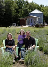 Owners Gwen and Mike Snyder and their daughter Savannah Snyder, for whom the farm is named, pose for a portrait in one of the two lavender fields at Savannah Meadows.Sonya Hebert-Schwartz - Staff Photographer