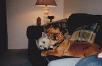In 1999, and with Casper as usual.