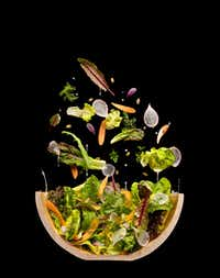 "A cutaway of a salad from ""The Photography of Modernist Cuisine."""
