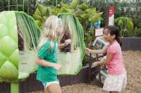 Artichoke station at the Incredible Edibles display at new children's garden at Dallas Arboretum.