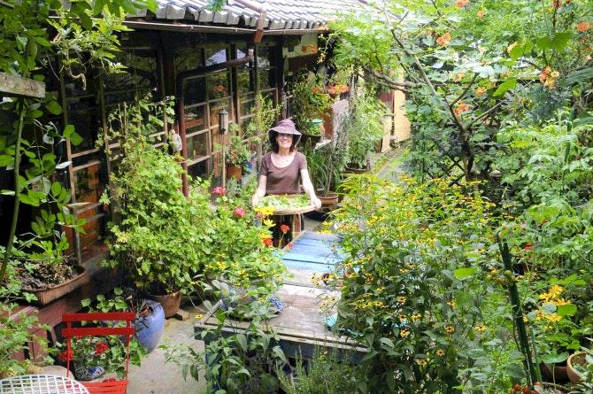 Expat S Gardening Style Intrigue S Kyoto Neighbors Gardening Dallas News