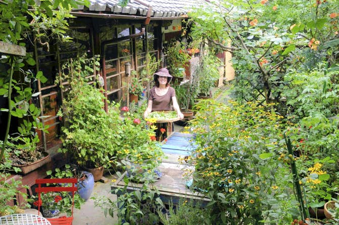Expat s gardening style intrigue s kyoto neighbors gardening dallas news for Pandy s garden center