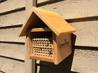 Bee houses, much like bird houses, are available at some local nurseries and online. They contain small tubes for native bees to nest in. Bee houses and kits are available from Crown Bees in Washington.( Crown Bees )