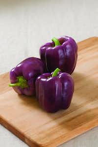'Islander' is one of the recommended colored bell peppers for the Dallas area.Johnnyseeds.com  -  Johnny's Selected Seeds