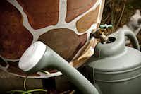 Each of Georgia Rayna's 55-gallon rain barrels has a custom paint job.