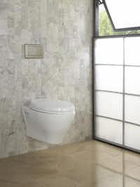 Hidden attributes - Toto's compact Aquia wall-hung toilet features a skirted design, elongated bowl, dual-flush or single-option, and utilizes an in-wall tank system (sold separately). From $400 at TKO and Jarrell Appliance Supply, both in Dallas; H2O Supply, Carrollton; and Rick's Hardware & Plumbing, Grapevine.TOTO Ltd. -  TOTO Ltd.