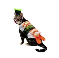 What cat doesn't dream of being a giant shrimp sushi roll? This one-size-fits-most outfit straps around the cat's belly with faux seaweed. A green cat hat straps on with an elastic band. Available in some stores and online. Store prices vary by location; petco.com price is $14.99.