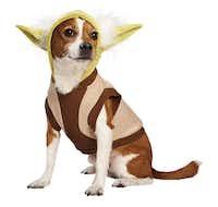 Is your mutt the ruler of the house? Then dress him appropriately as the wise Jedi master in this Yoda Dog Hoodie with white tufts of hair and a brown-and-beige robe. It's part of the Star Wars collection available at Petco all year. The dress-up duds include collars, toys and more. Available in sizes extra-small, small and medium. Store availability and price vary by location; petco.com price is $19.99.
