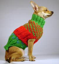 Canines celebrate the season in style wearing the Carmello, a cheery red and green, all-acrylic dog sweater hand-knitted to order by La Bamba Dog Sweaters. On sale through Jan. 2, starting at $90. labambadogsweaters.com.