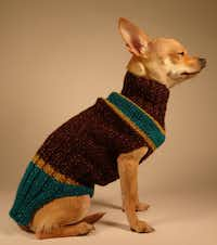 Stanley Marcus, the dog sweater, is as iconic as its namesake. Hand knit with acrylic and metallic yarns, the sweater starts at $150. labambadogsweaters.com.