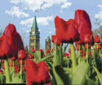 Springtime blooms beautifully on OttawaÕs Parliament Hill.