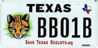 For backers of the Save Texas Ocelots cause.