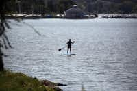 Angela Dagit of Dallas headed back to shore on a paddle board at White Rock Lake on Thursday afternoon. Lake levels are up after a scary fall during last year's drought.
