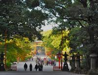 The grounds at Usa Jingu are large and grandiose, with numerous orange torri gates, signifying that visitors have entered the heavenly realm. Usa Jingu is one of the most important but least known of the major Shinto shrines in Japan.( Suzanne Morphet  -  Special Contributor )