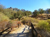 At Pinnacles National Park near California's Salinas Valley, needle-leafed chamise covers sun-exposed south slopes; broader-leafed plants populate cooler, moister northern slopes.