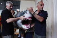 "Craig Thorburn (left) and Mike Bhana, curators of the ""Planet Shark"" exhibit, move a replica of a 14-foot great white shark into place at the museum."