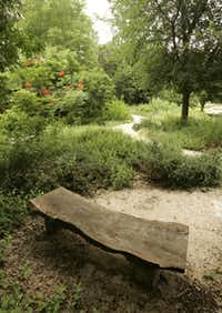 The Texas Master Naturalist Program demonstration garden near the River Walk includes a profusion of native plants that attract birds, butterflies and bees.