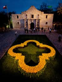 A quatrefoil made of 10,000 yellow roses commemorates the 175th anniversary of the Battle of the Alamo, fought in 1836.