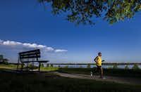 Marathon runner Tony Reed credits Dr. Kenneth Cooper for his lifelong running habit and co-founding of the Dallas Black Marathoners Association.(Ashley Landis/Staff Photographer)