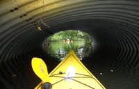 "In Oleta River State Park, near Sunny Isles, Florida, kayakers paddle into Sandspur Island's, ""bellybutton,"" through a tunnel for quiet time among the mangroves."