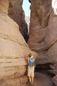 The Mecca Hills southeast of Palm Springs are riddled by 'slot' canyons. There are no trails as we know them. You simply follow the canyon for as long as you want -or dare!
