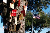 Bryson Gappa created memorial trees in her front yard to honor soldiers from Texas who have died in Iraq and Afghanistan.
