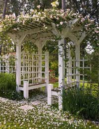 Pergolas act as structure for climbing plants but also are gateways dividing garden rooms.