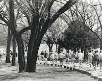 82 runners showed up for the first annual Dallas Marathon at White Rock Lake Park on March 5, 1971. Sixty-one runners finished, including one woman.