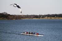 A rowing crew practices along the southwestern shore of White Rock Lake on March 2.
