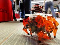 A wireless robot strolling around was just what you'd expect to find at TI's DIY day.(Tom Fox - Staff Photographer)